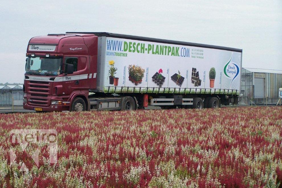 Full-colour geprint vrachtwagenzeil Desch Plantpak